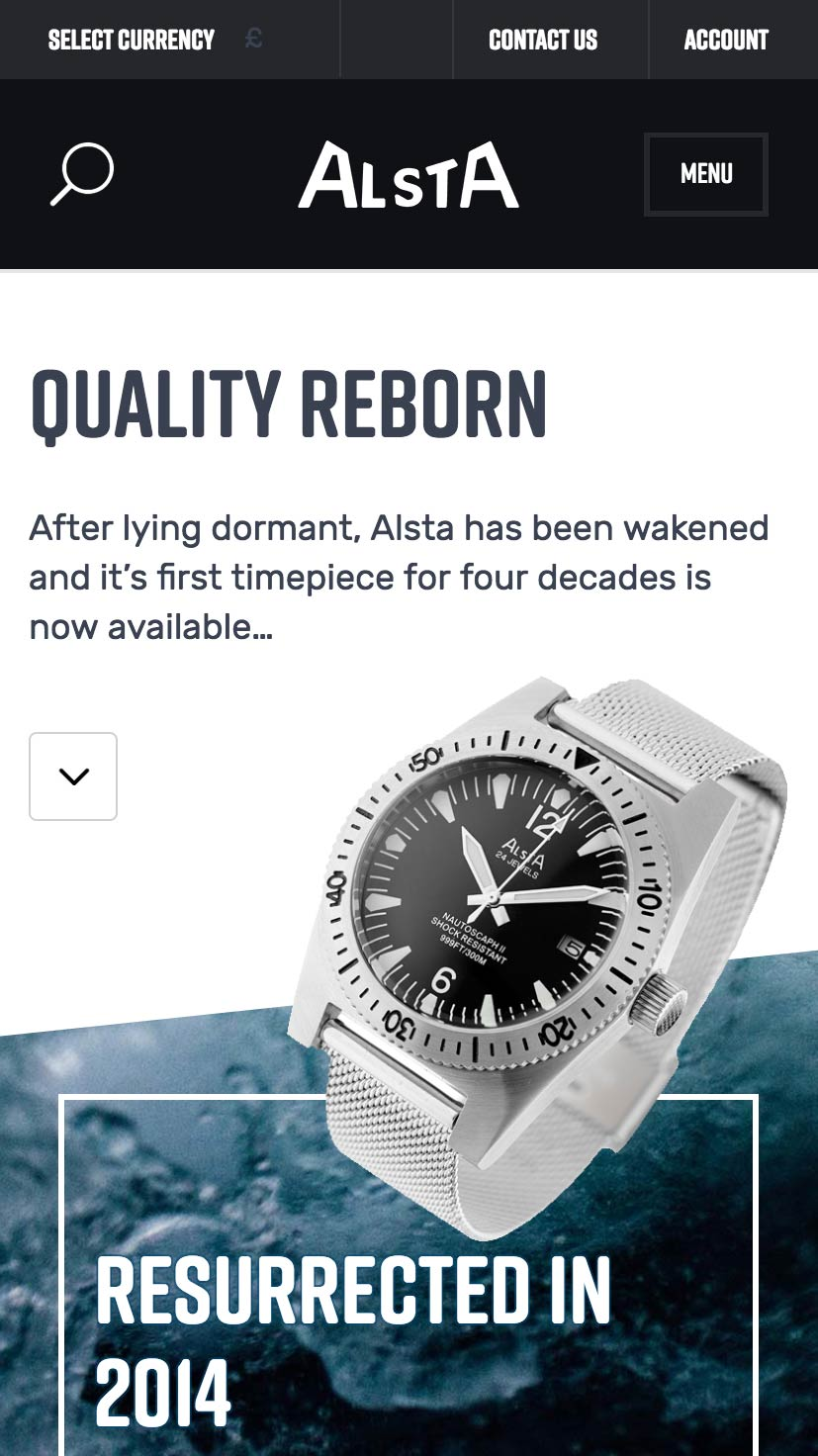 Alsta Watch Mobile View
